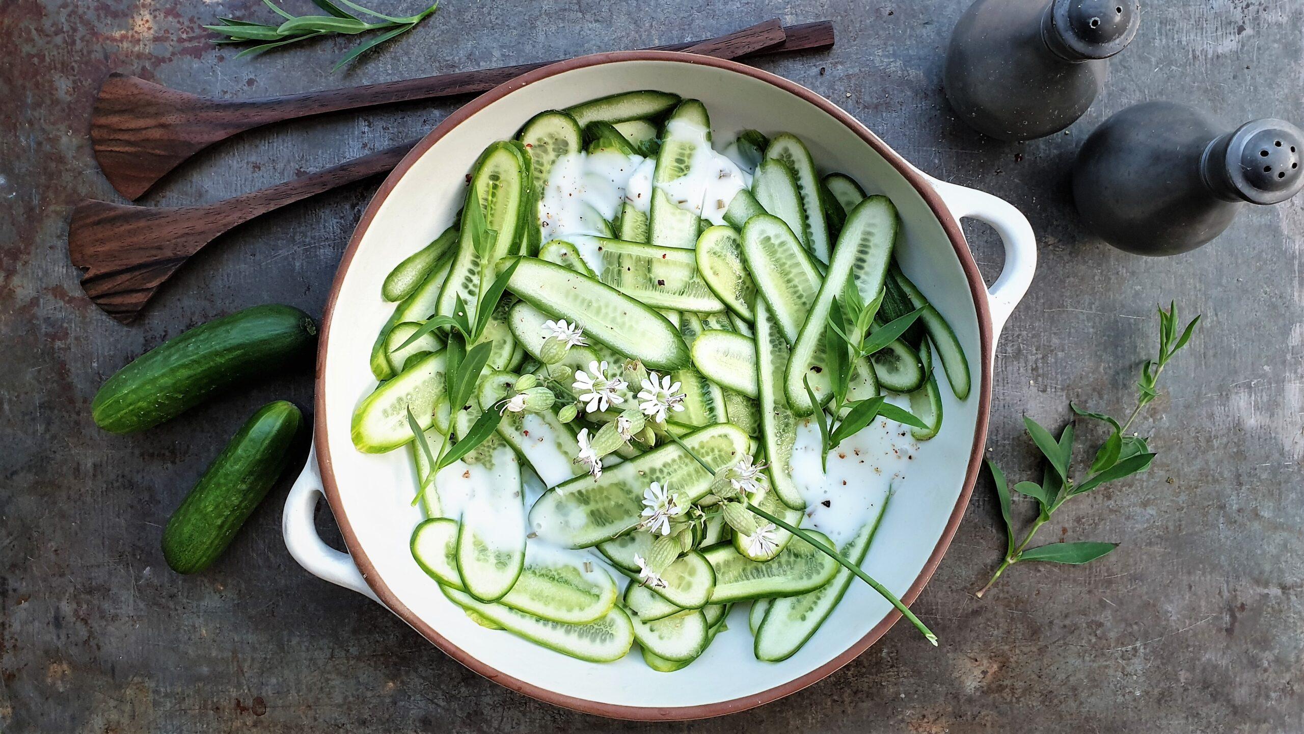 Komkommersalade met yoghurt dressing en Silene