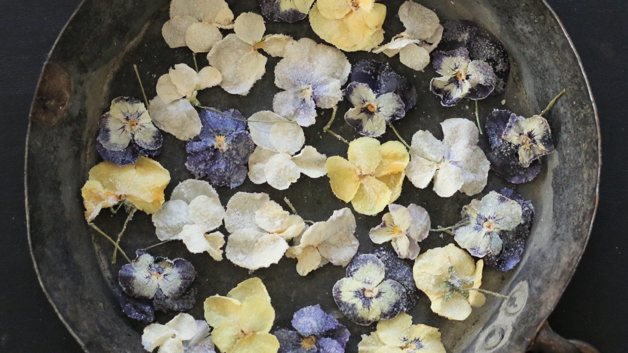 Gesuikerde viooltjes